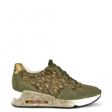 Love Lace Army and Antic Gold Trainer