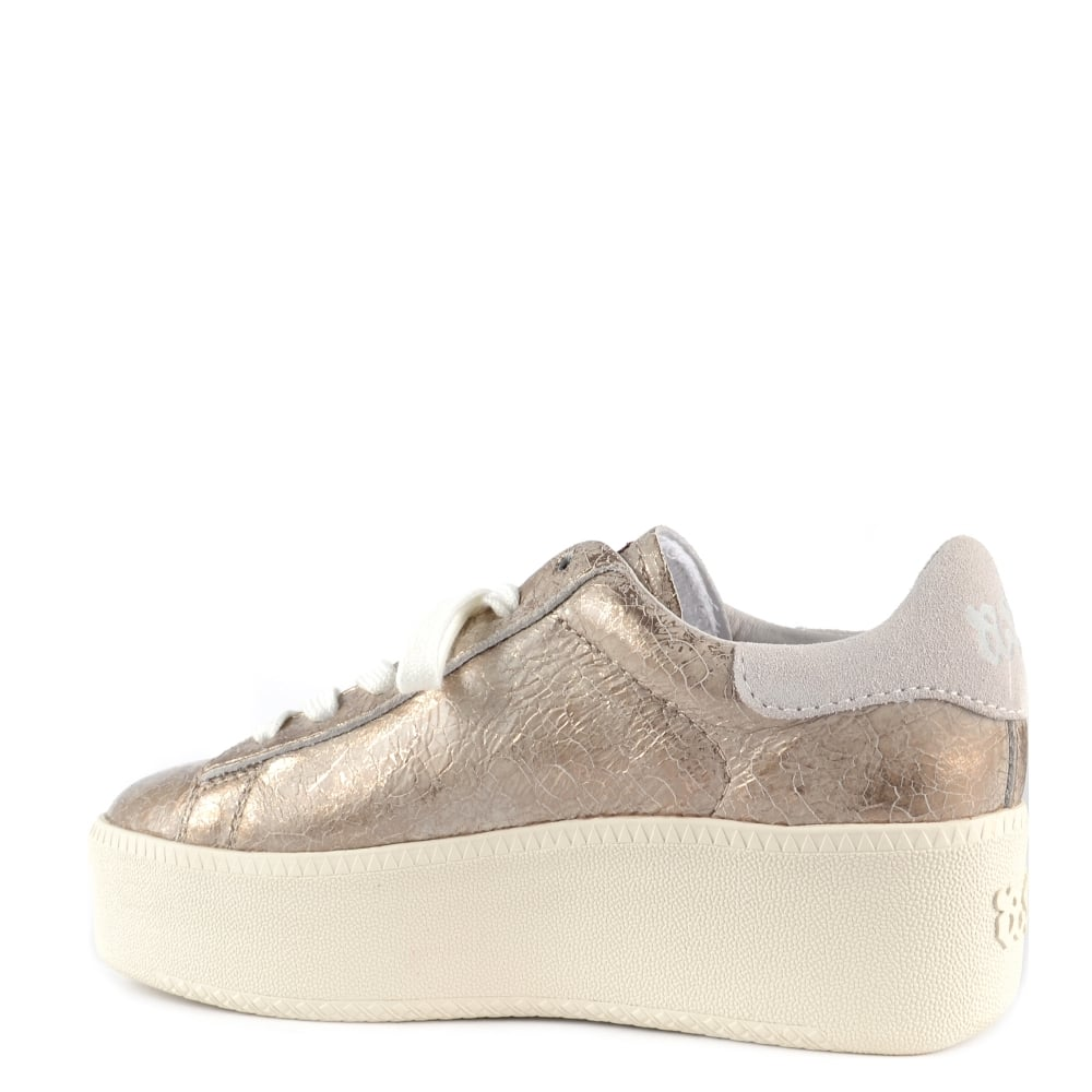 82fe6d0a757e Ash Cult Gold Cracked Leather Trainer