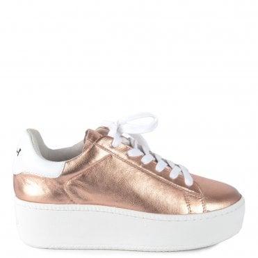 27e282f1f7cb3 Cult Rame & White Trainer. Ash Footwear ...