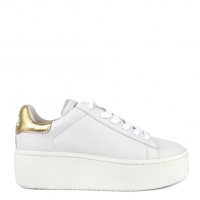 Ash Footwear Cult White and Ariel Trainer