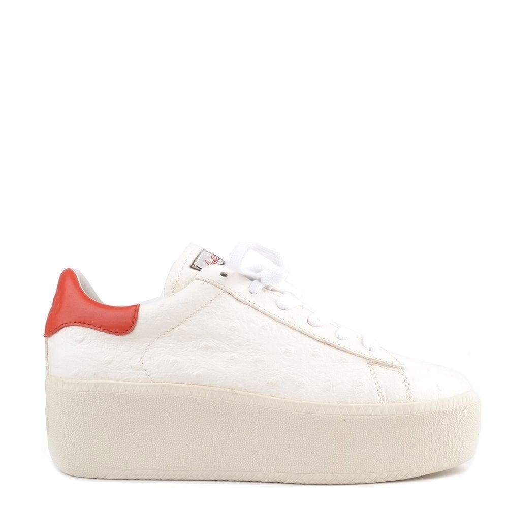 71601b3549b6 Ash Footwear Cult White Ostrich Effect Platform Trainer - Women from ...