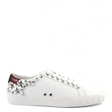 Dazed White and Bordeaux Leather Studded Trainer