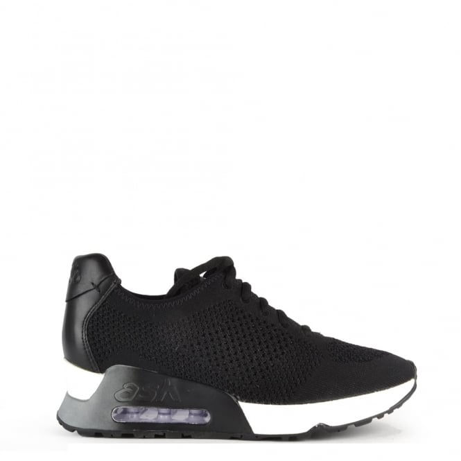 Ash Footwear Lucky Knit Black Trainer