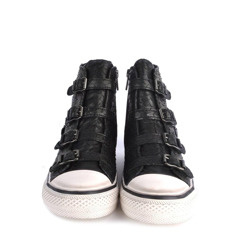 5b8830036d48 Ash Footwear Virgin Black Python Buckle Trainer - Shop Online Now