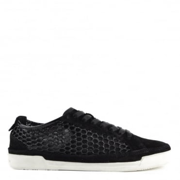 Haz Black Suede and Glitter Mesh Low Top Trainer