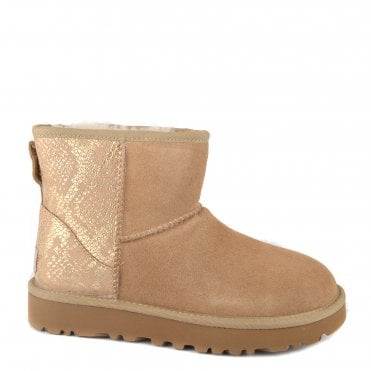 70ff83fc026 Womens Ash Boots   Ash Womens Boots   Womens Ash Ankle Boots